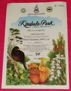 kinabulu certificate